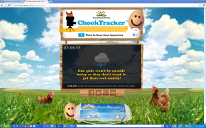 chook tracker