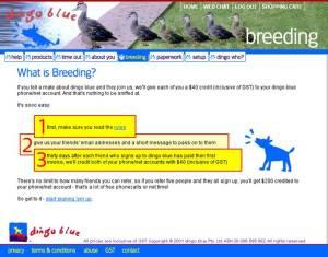 Dingo Blue