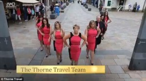 Thorne Travel image