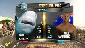 2AAFCC5500000578-3167880-Surfer_Mick_Fanning_may_have_had_the_scariest_brush_with_death_b-a-10_1437414862593